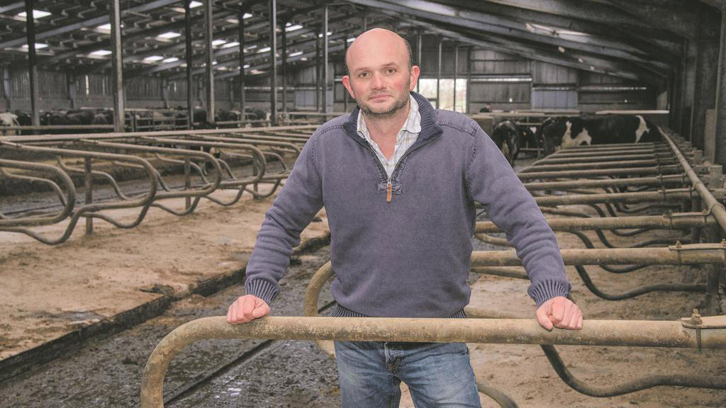 Phil Latham: Farm tasks up to date, but a lot to do for next week's equine event