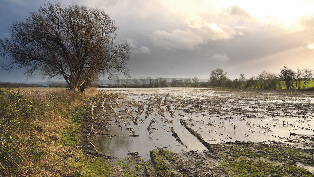 Britain's farmers unite as floods crisis continues