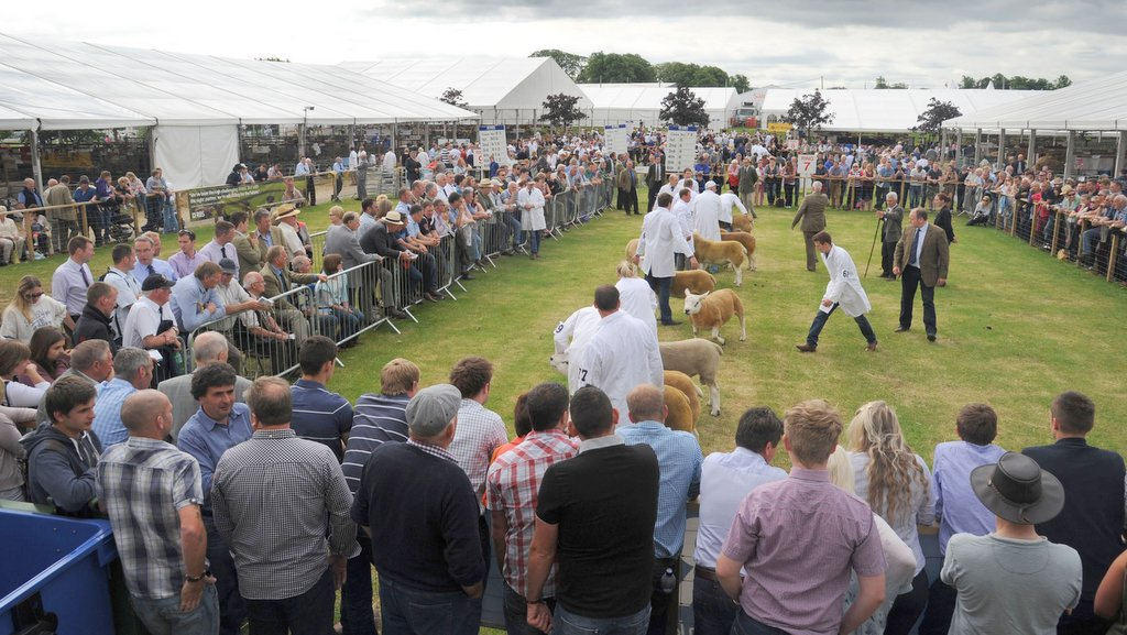 Use your stock judging skills to be in with a chance of winning £250