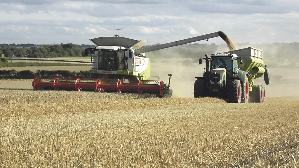 Fall in cereals and oilseeds area for harvest 2015
