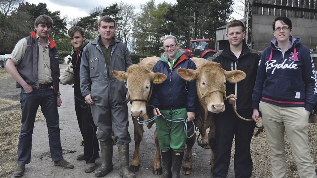 New competition for UK's next generation of beef farmers