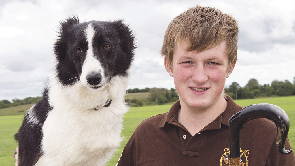 Who will be crowned top dog at the International Sheep Dog Trials?