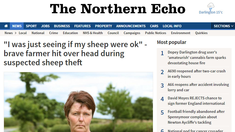 """""""I was just seeing if my sheep were ok"""" - brave farmer hit over head during suspected sheep theft"""