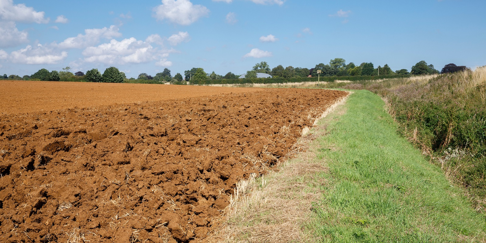 Fine tuning cultivation equipment for improved black-grass control