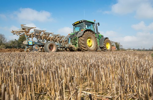 The Ultimate Guide to controlling black-grass before planting your next crop