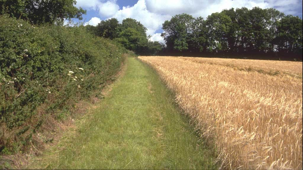 Farmers urged to respond to Commission greening consultation