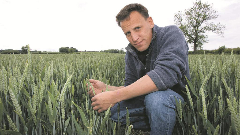 Steve Heard: Oilseed harvested and drilled, but waiting for a market upturn before selling this year's crop