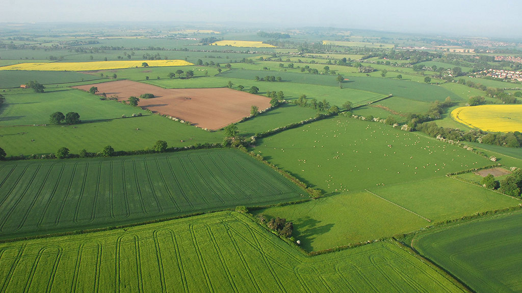 Farmland market levels out despite year of 'unprecedented' political volatility