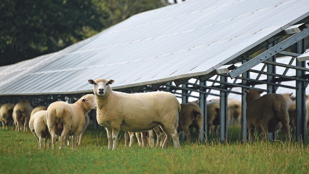 Farming industry cautiously welcomes Government changes to solar and wind tariffs