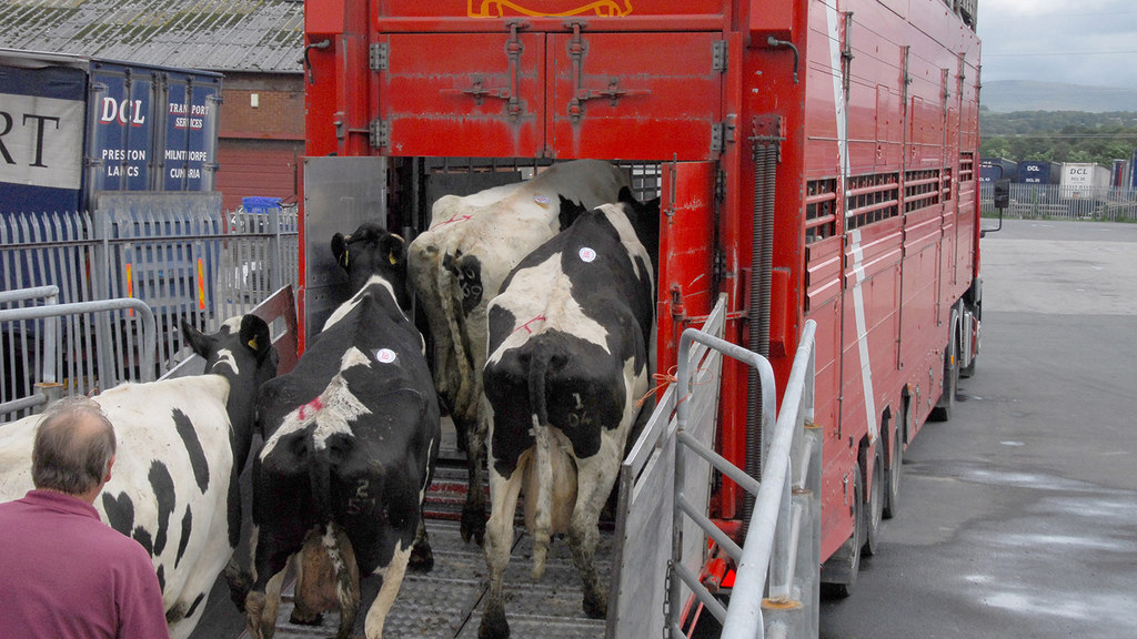 Defra announces major simplification of livestock movement rules
