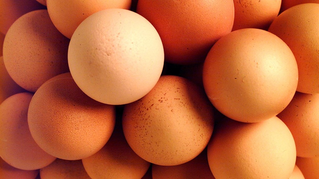 Eggs scandal: Industry calls on UK retailers to change sourcing policies