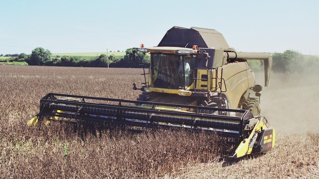 Harvest 2019 update: Weather headaches continue for British farmers