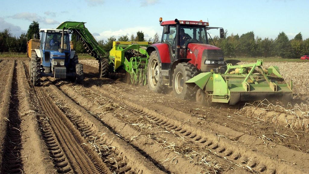 Good harvesting conditions but average yields for potatoes