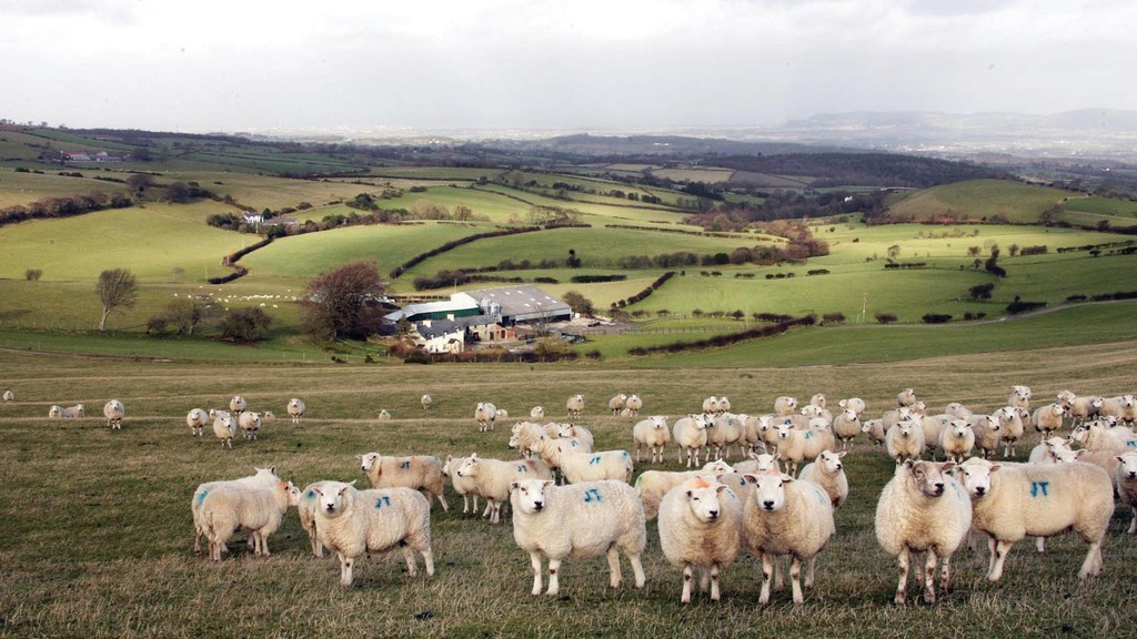 Farmers depend on £200 million a year from EU subsidies