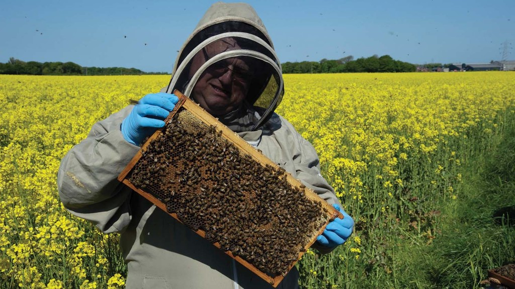 Farmers encouraged to register for BeeConnected ahead of spring spraying
