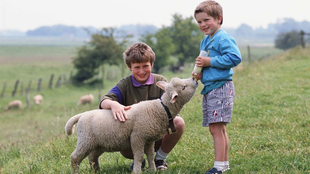 Five ways to introduce farming to your kids