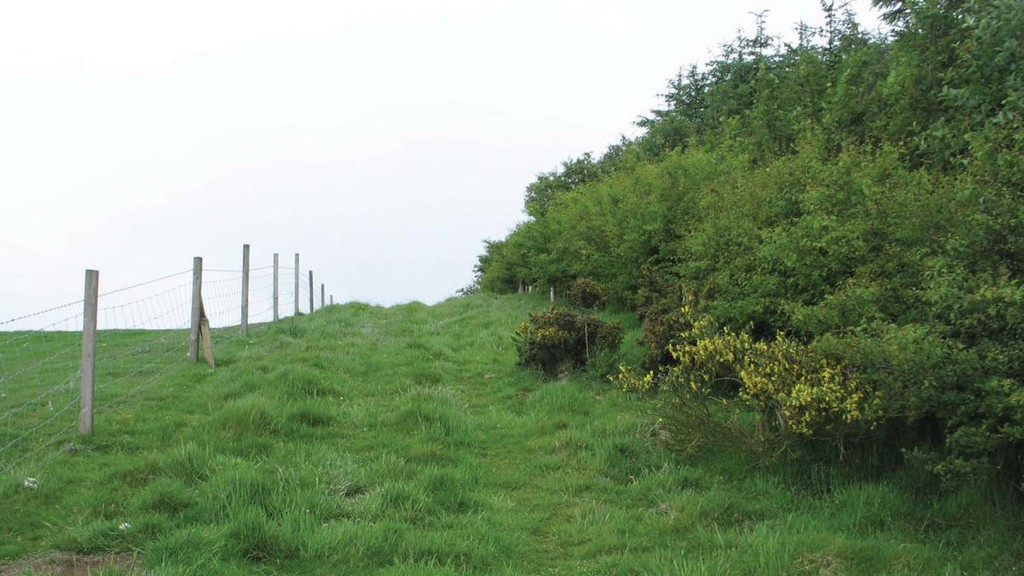 Farm groups welcome plans to axe greening measures from 2021