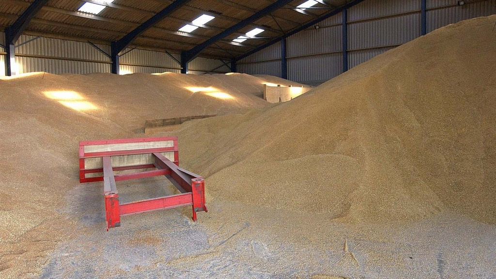 Threats and opportunities for UK in risky grain market