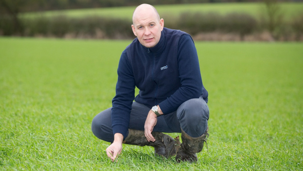 Talking arable with Andrew Robinson: Hoping for a safe, dry and prosperous harvest
