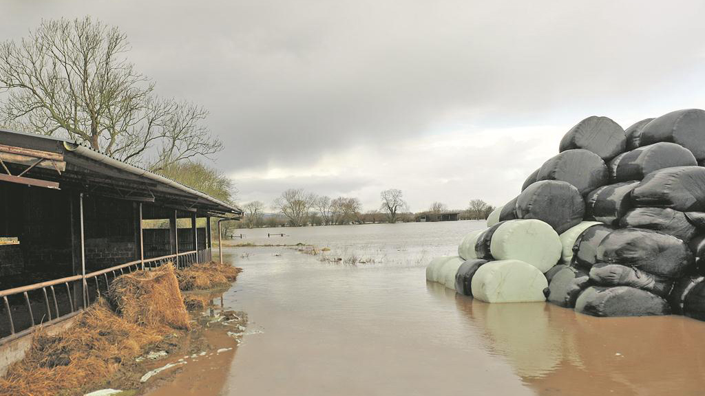 Somerset Levels farmers facing uncertain future as flooding crisis continues