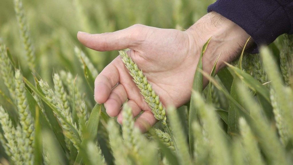 EU study highlights benefits of plant breeding