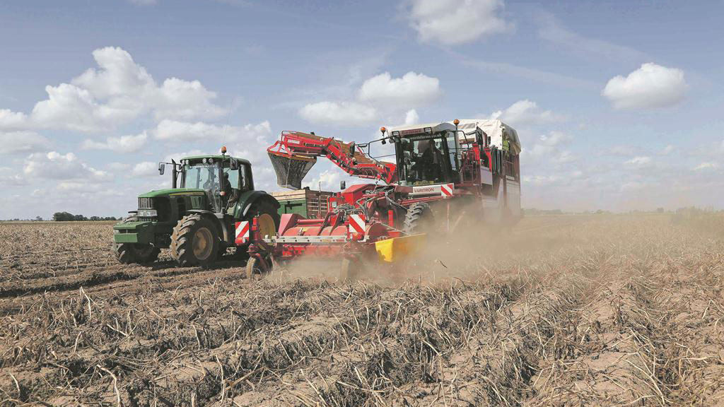 Farm focus: Diversifying with potatoes from field to fork