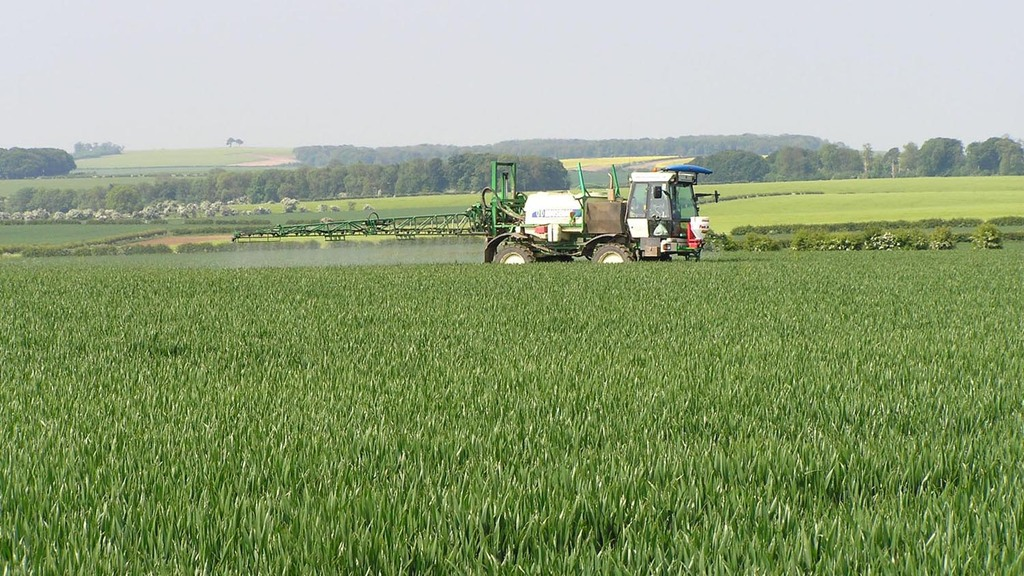An 'unusually' large response to T1 fungicides is a feature of 2015 season