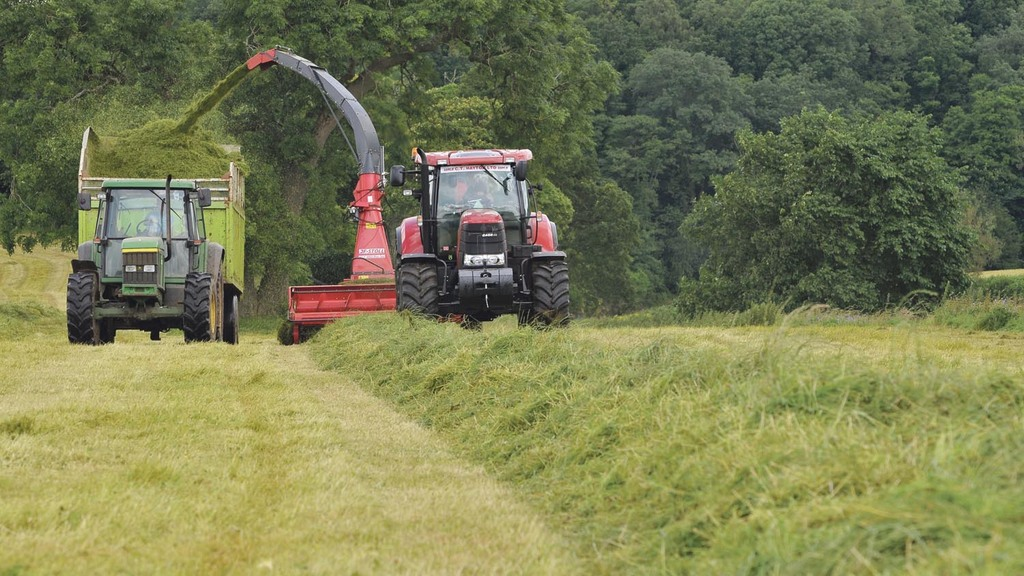 High costs of late silage cuts make value questionable