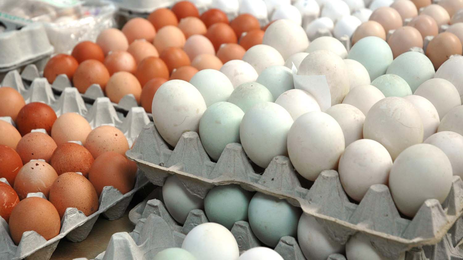 Eggs should be considered a 'super food', says new research