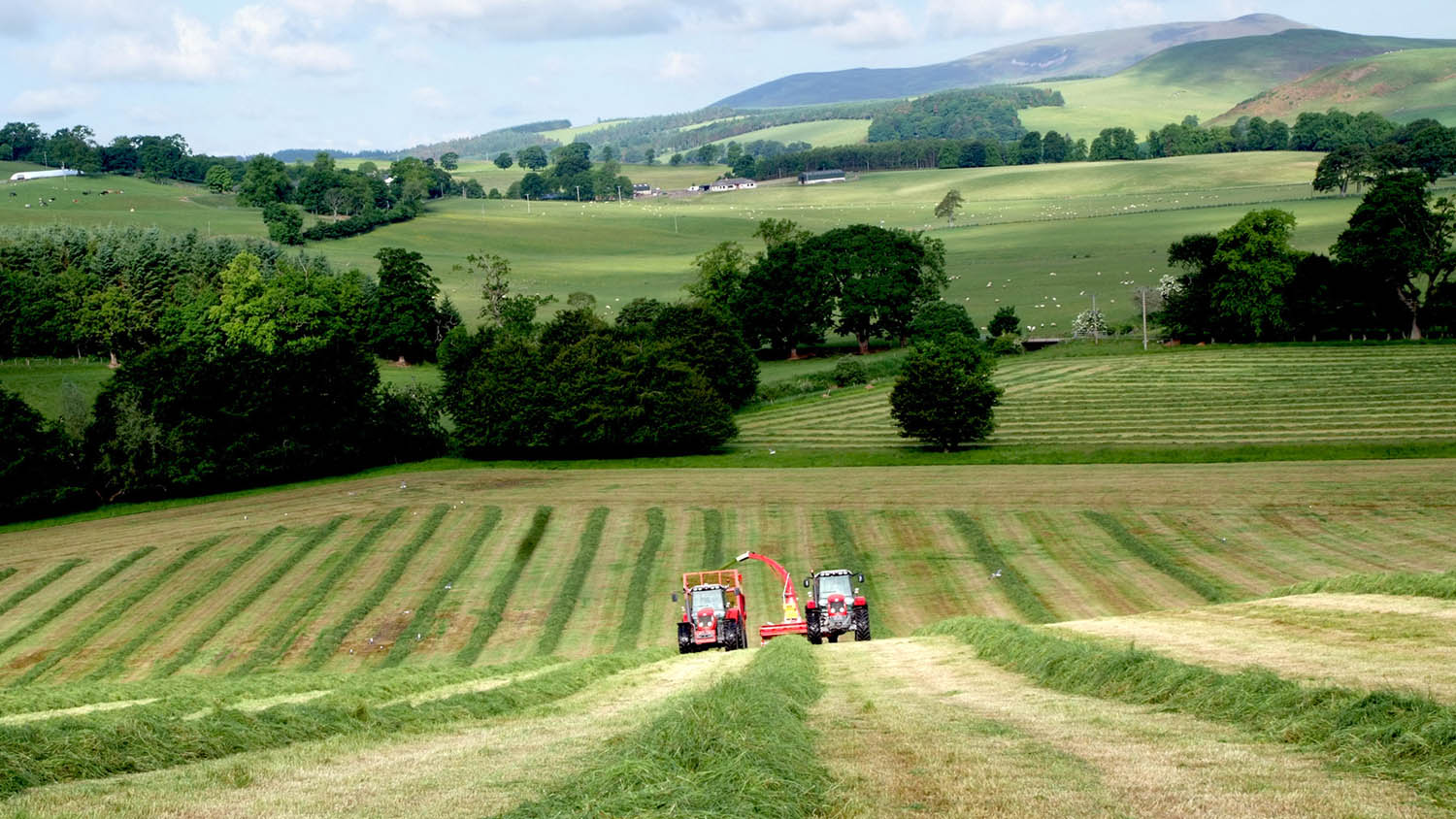 Top Tips - how to enter the business of share farming