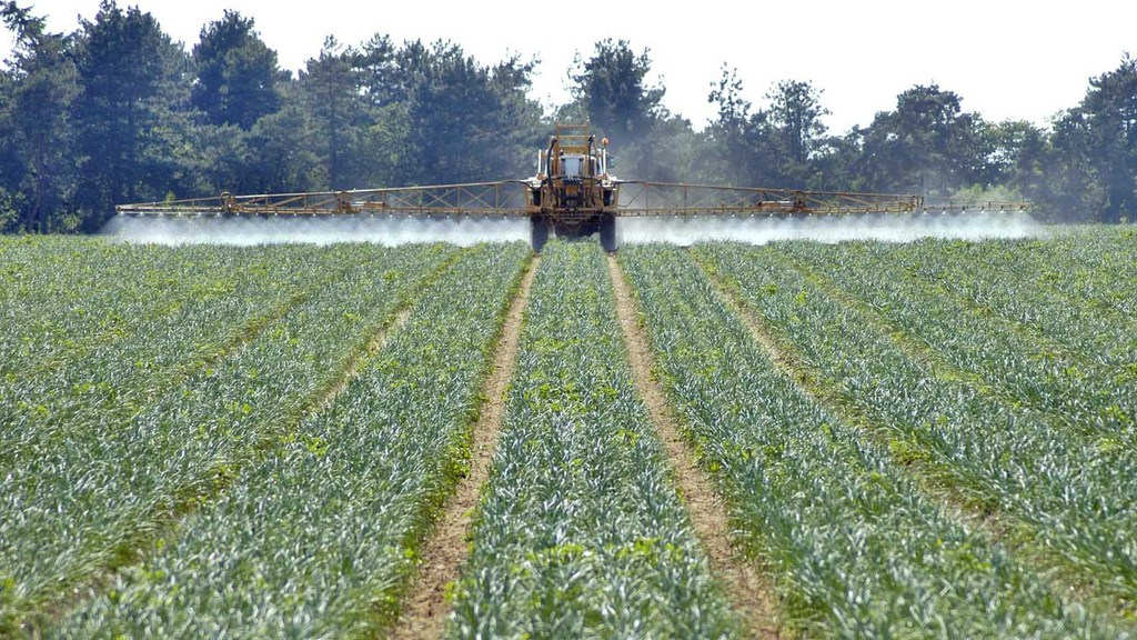 Neonicotinoid ban 'unnecessary and unjustified' - Defra