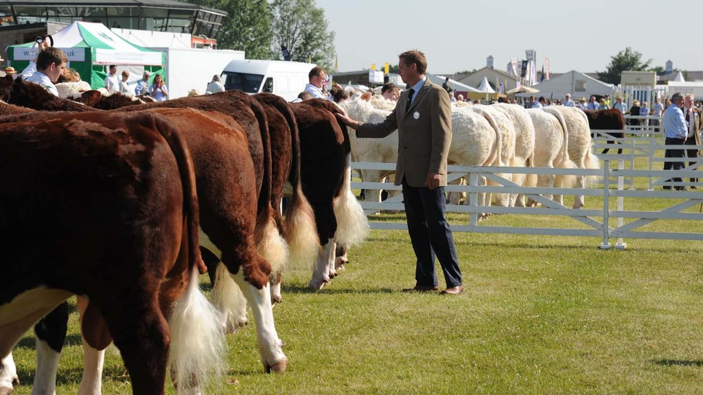 Go ahead for 2021 Great Yorkshire Show