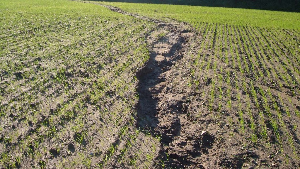 Arable cross compliance changes: what farmers need to know