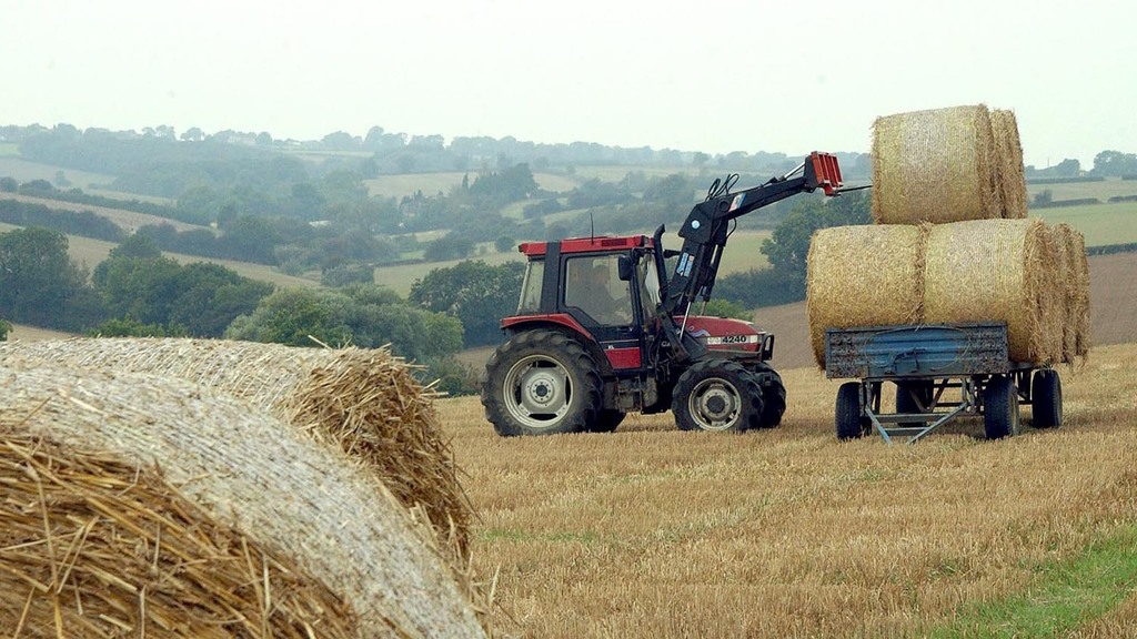 Making the best wrapped bale silage