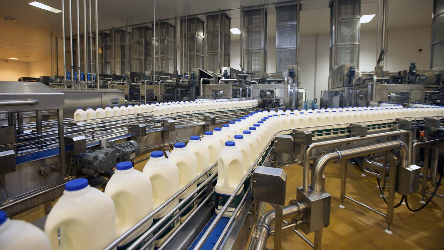 Record dairy exports drive UK growth