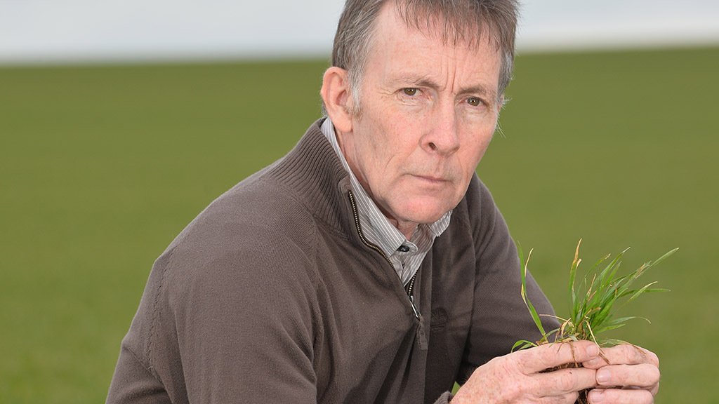 Talking agronomy with Neil Buchanan: Patience is generally well rewarded