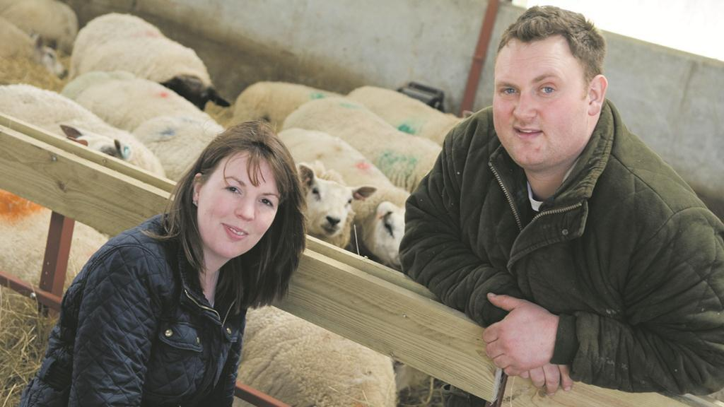 Farm focus: Determination pays off for tenancy-winning Aberdeenshire sheep breeders