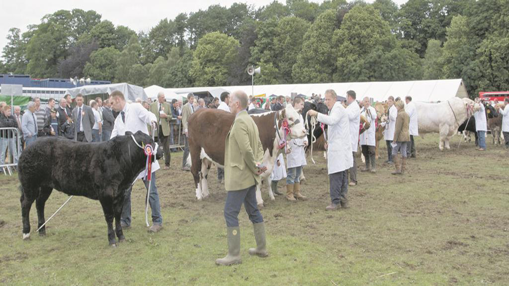 Turriff show wins Show Business 2013