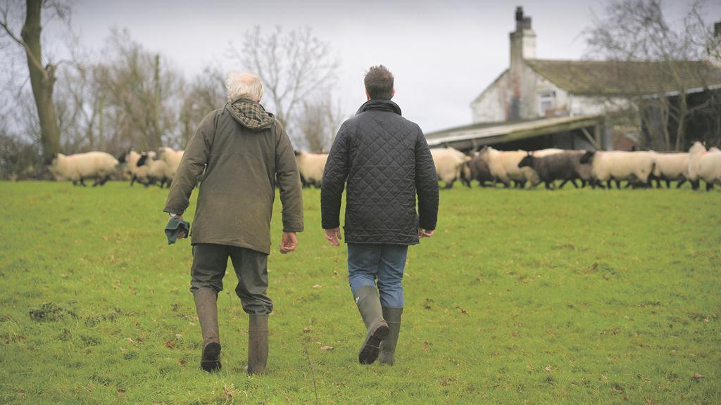 Farmers among the healthiest workers in the UK