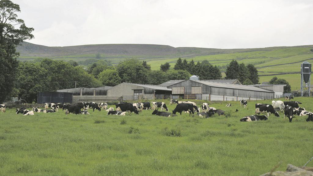 An application has been submitted for a new building for dry cows.