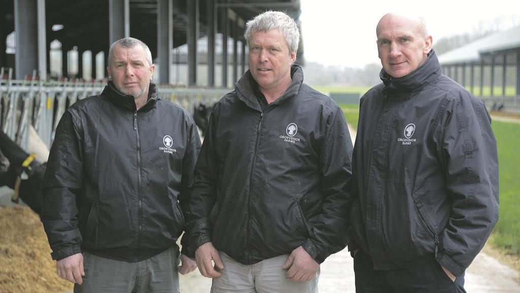 Farm focus: New-build dairy works well for cows and staff