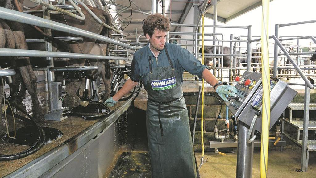 Farm focus: A 1,350-cow dairy unit business planned around scale and grass