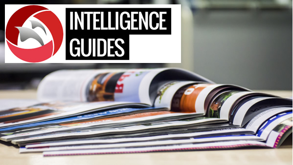 About our Intelligence Guides