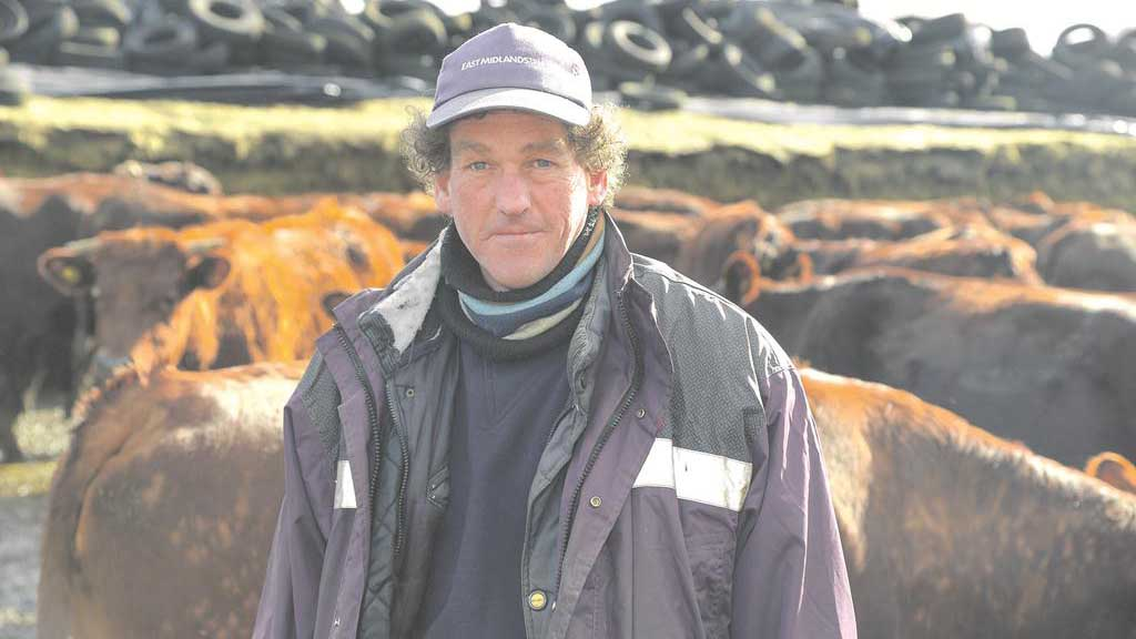 Farm focus: Red Polls bring farm back from brink of closure