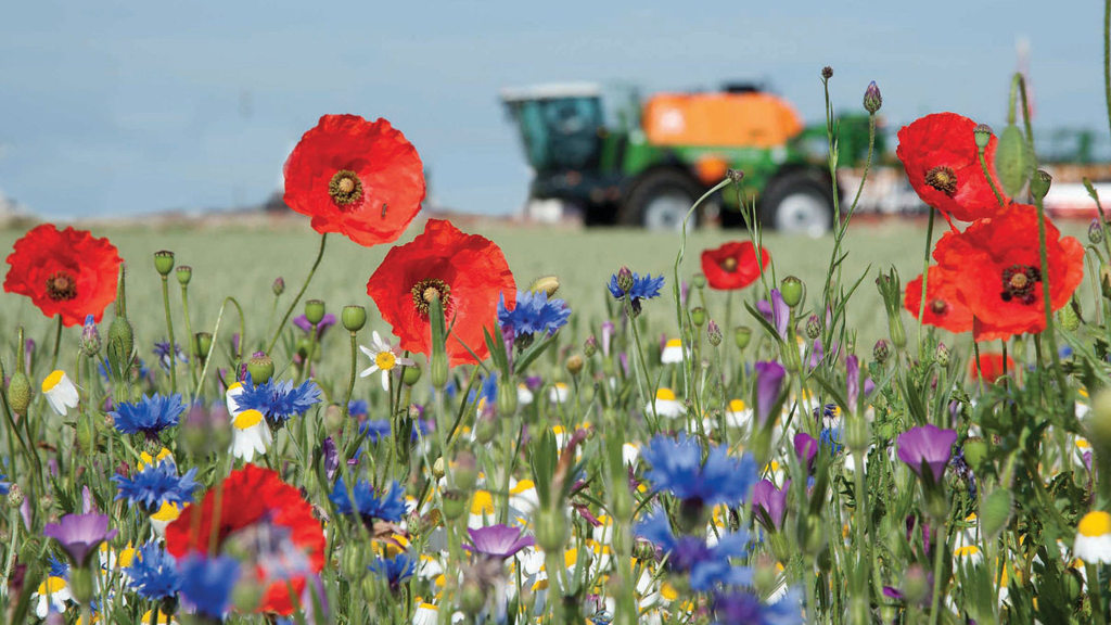 Farmers to start receiving £70 million in agri-environment payments this week