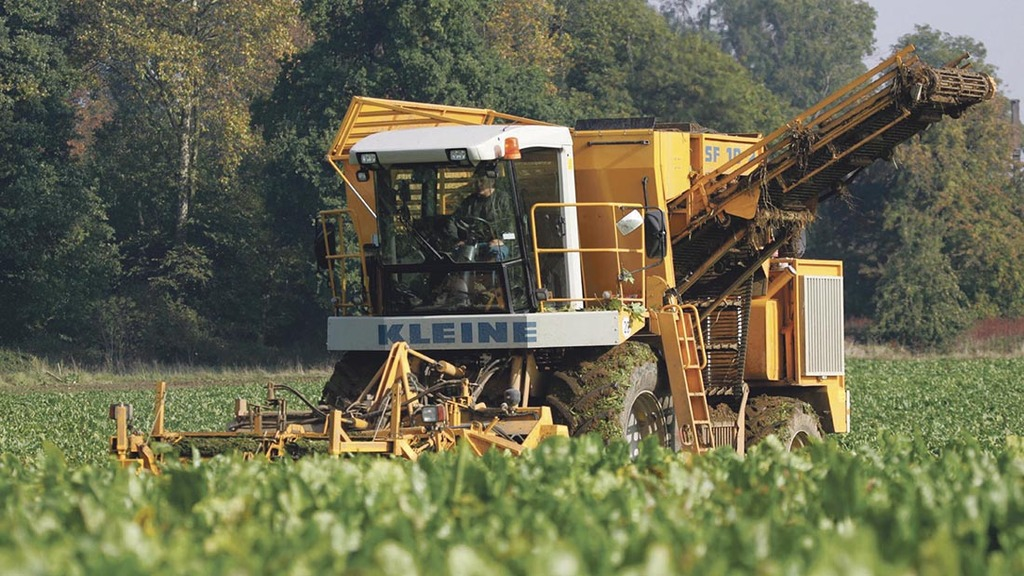 Don't miss this week's arable news highlights - October 2
