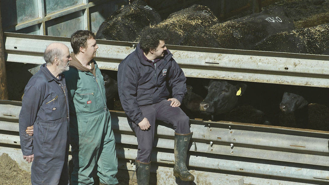 American genetics create a linchpin for Angus breeder