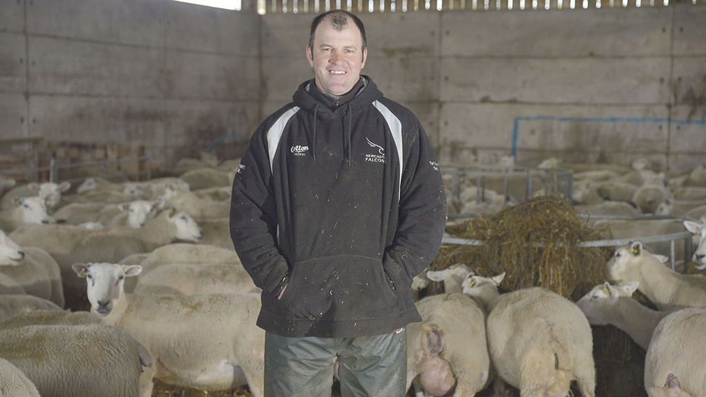Profit from Grass: Careful grass management to accommodate ewes and lambs