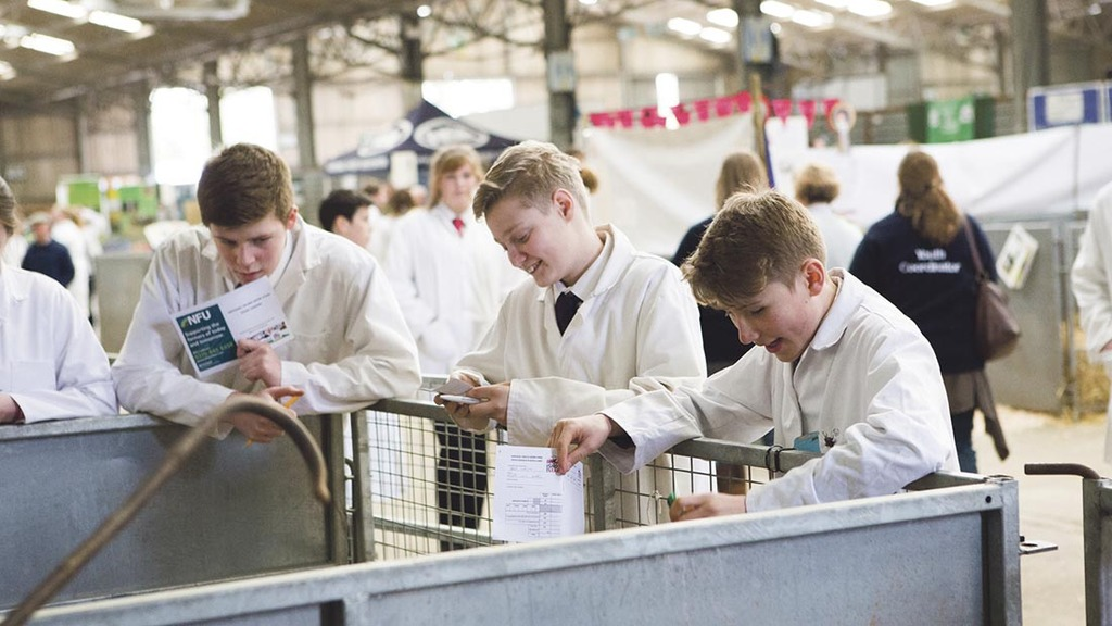 Young people offered training scheme to get foot on farming ladder