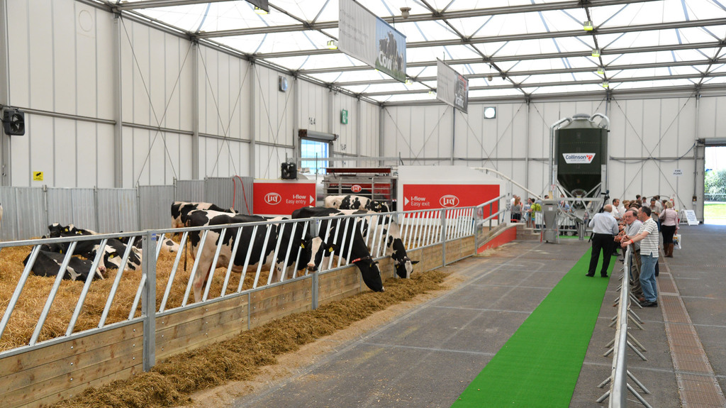 Livestock Event wins major award